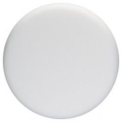 Disque mousse souple Ø 170 mm BOSCH 2608612024